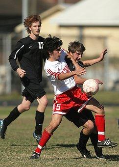Soccer, Football, Sport, Ball, Game, Player, Grass