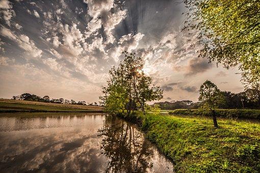 Tree, Nature, Sky, Landscape, Green, Grass, Blue