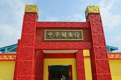 Chinese State Fish House, Goldfish, Arena