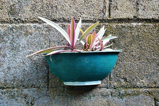 Flower Pot, Hand Made Pot, Hanging Pot, Cement Pot