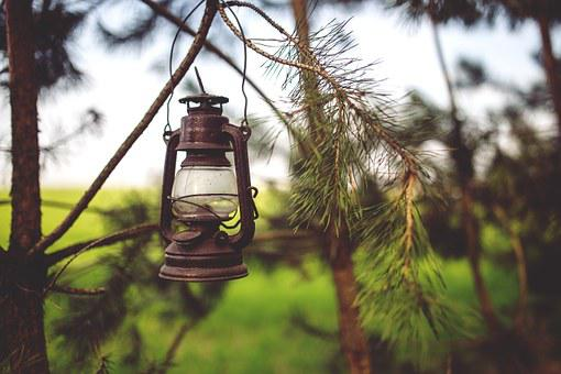 Kerosene, Lamp, Woods, Paraffin, Light, Old, Vintage