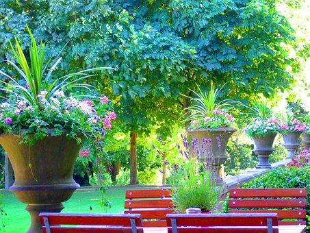 Nature, Landscape, Still Life, Cafe, Table, Park