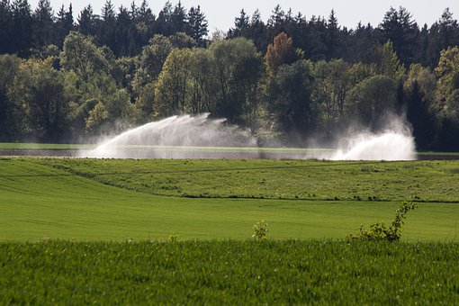Water, Fields, Blow Up, Irrigation, Artificial