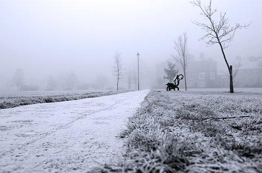 Winter, Branch, Snow, Black, White, England, Seasons