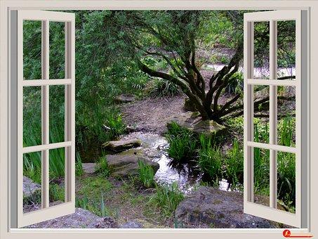 Window, Garden, Window Frames, Outlook, Bach