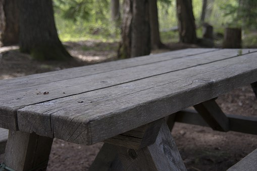 Picnic, Table, Picnic Table, Nature, Wooden, Scene