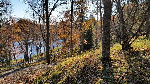 Finnish, Spring, Park, Nature, Bright, Beach, Landscape