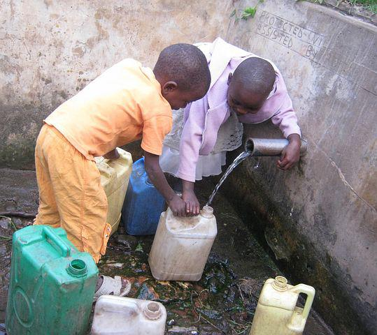 Africa, Collecting Water, Water, Nature, Wild, Wildlife