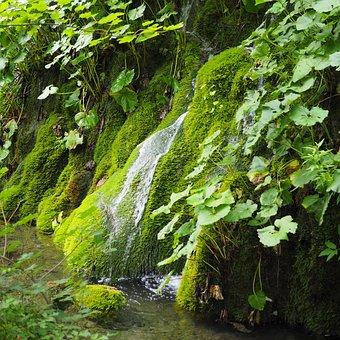 Plitvice, Nature, Waterfall, Water, Landscape, Croatia