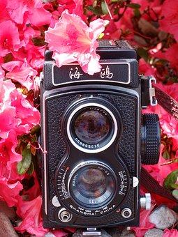 Camera, Seagull, Analog, Medium Format, Flowers