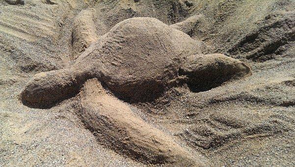 Turtle, Sand, Sand Sculptures, Beach