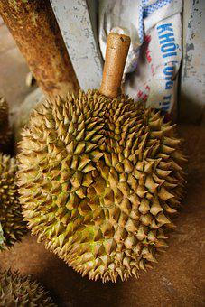 Durian, Exotic, Fruit, Tropical, Asian, Market, Smelly