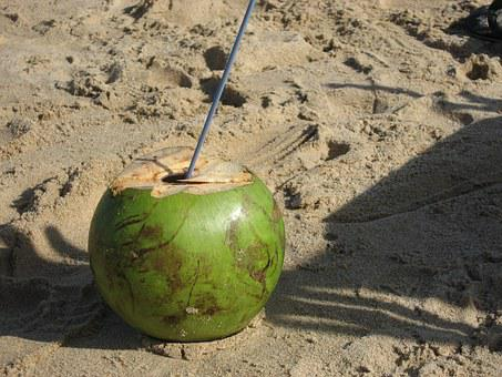 Beach, Coconut, Brazil, Drink, Cocktail, Natural, Fresh