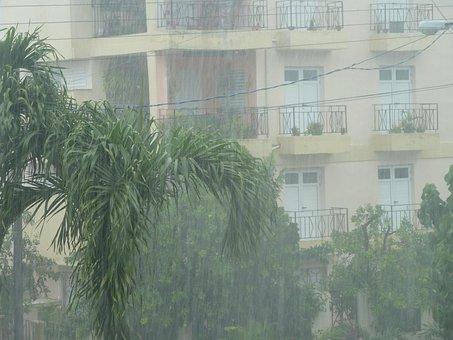 Rain, Storm, Downpour, Rainstorm, Shiver, Wet