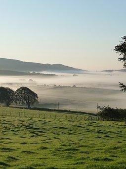 Fog, Morning, Dawn, Landscape, Nature, Mist, Tree