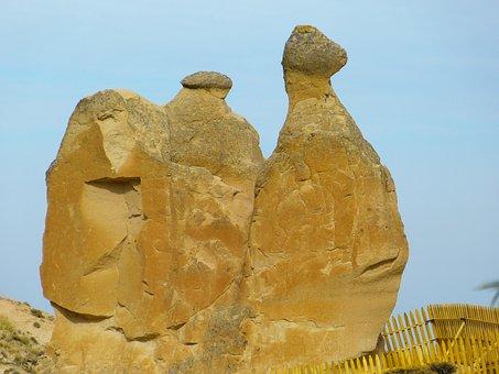 Camel, Cappadocia, Tufa, Rock Formations, Turkey