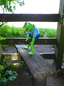 Kermit, Frog, Get Over, Gate, Wood, Fence, Wood Fence