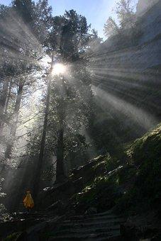 Yosemite, Nature, Hiking, Scenic, God's Eye, Sun Rays