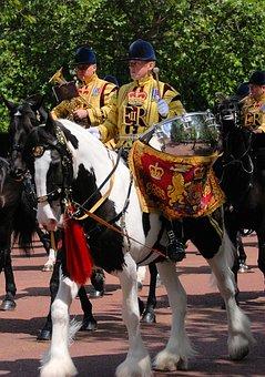 Horse, Drummer, Pageantry, Horseback, Drum, Costume