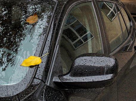Autumn In The City, Car, Yellow Leaf, Rain
