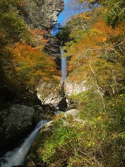 Japan, Autumnal Leaves, Waterfall, River, Natural