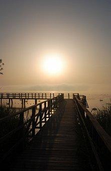 Spring Lake, Sunrise, Lake, Web, Bad Buchau, Landscape