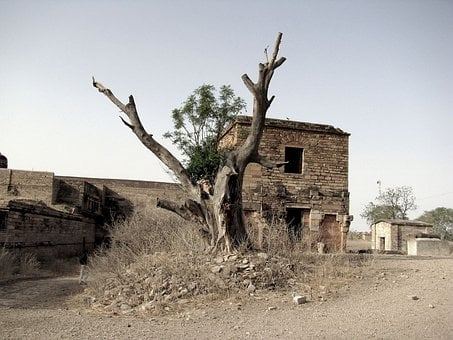 Fort, Ruins, House, Dry, Grass, Walls, Stones, Dead