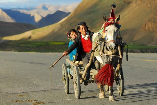 Horse Drawn Carriage, Transportation, Couple, Coach