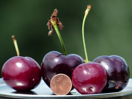 Cherries, Large, Huge, Size Comparison, Cent, Penny