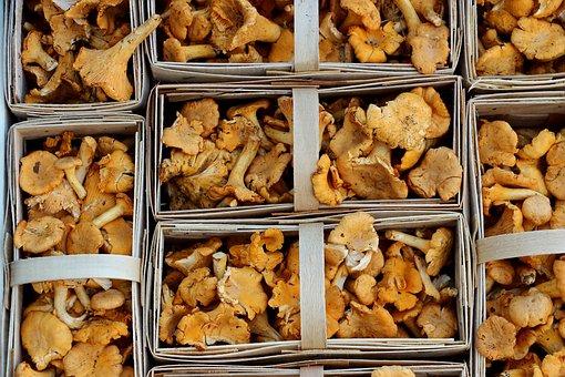 Mushrooms, Chanterelles, Market, Food, Mushroom