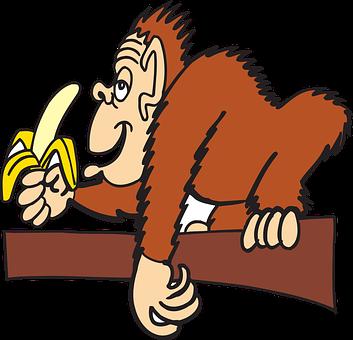 Ape, Branch, Banana, Animal, Peeled, Eating