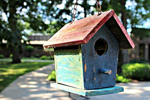 Bird House, Garden, Rustic, Bird, Nature, Shelter