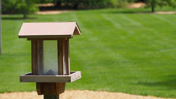 Bird House, Bird, House, Birdhouse, Wooden, Nest, Home