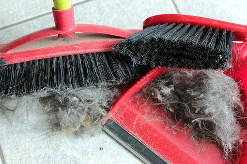 Broom, Hand Brush, Blade, Return, Fluff, Hair