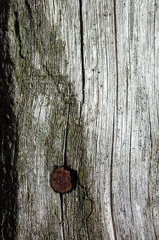 Wood, Particular, Ancient, Nail, Old, Used, Fence, Door