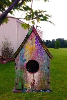 Birdhouse, Bird, House, Wooden, Hanging, Box, Shelter