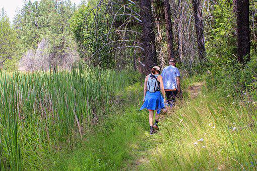 Hike, Hiking, Couple, Active, Nature, Forest, Marsh