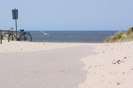 Beach, Dune, North Sea, Sand, Sea, Bike, Seagull, Away