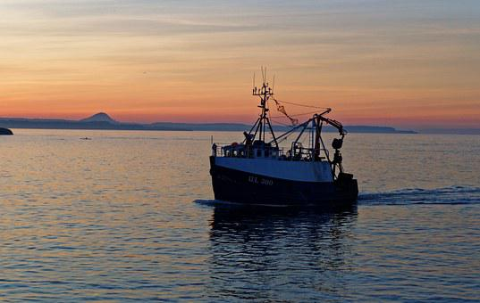 Fishing Boat, Boat, Sunset, Harbor, Dusk, Catch, Travel