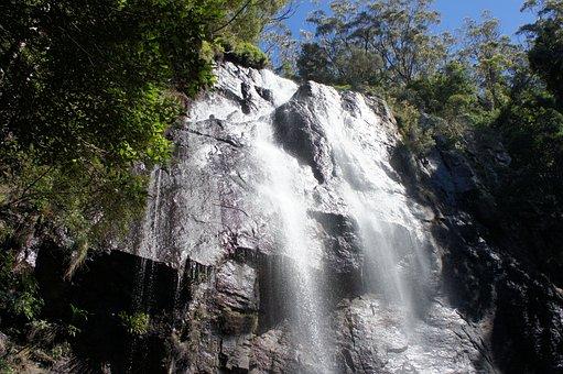 Another Waterfall, Springbrook National Park