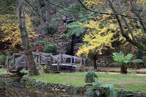 Australia, Victoria, Bridge, Pond, Autumn, Nature