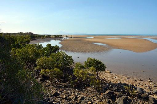 Australia, Queensland, Cape Tribulation, Bank, Sea