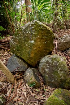 Rocks, Boulders, Basalt, Geology, Forest, Rainforest