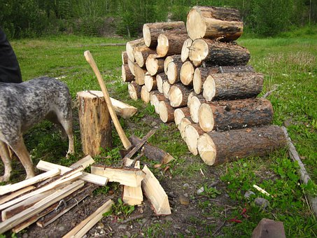 Fire Wood, Wood, Pile, Stacked, Stack, Camping, Camp