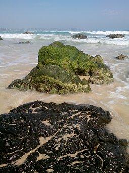 Kirra Beach, Rocks, Beach, Ocean, Moss, Coast