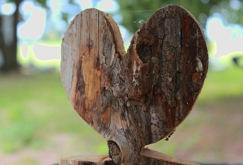 Heart In The Wood, Heart, Wood, Nature