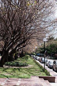 Street View, Newnham, Landscape, Artistic Conception