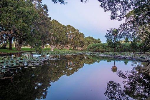 Centennial Park, Sydney, Australia, Landscape