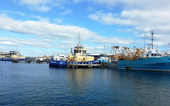 Harbour, Marina, Fishing Port, Sailing, Water