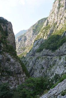 The Tara River, Montenegro, Canyon, Height, Mountains